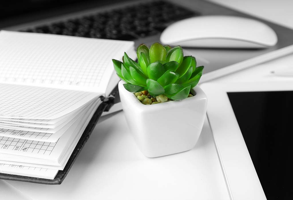 A touch of greenery on desk