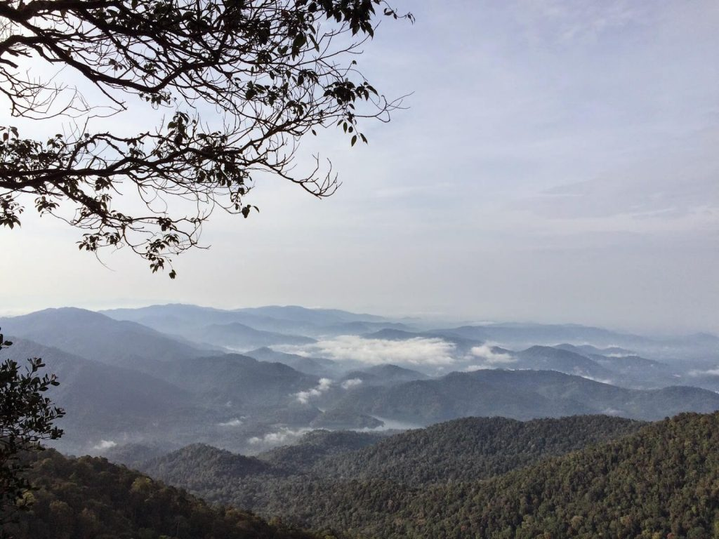 View from Gunung Nuang