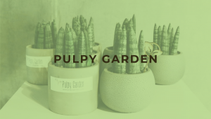 plants by Pulpy Garden Malaysia